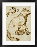 Framed Wolf and Two Doves