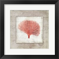 Framed Coral Linen II - Mini