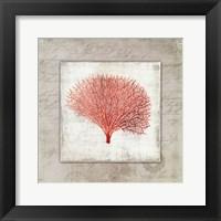 Framed Coral Linen II - Mini