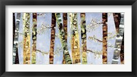 Framed Bark Abstract