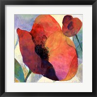 Framed Poppy I