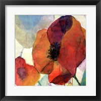 Framed Poppy II