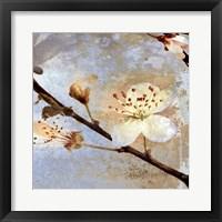 Framed Fresh Blossoms 2