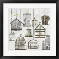 Framed Birdcages Collage Square I