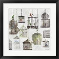 Framed Birdcages Collage Square II