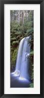 Framed Beauchamp Falls Vert II