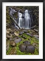 Framed Stevenson Falls