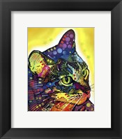 Framed Confident Cat