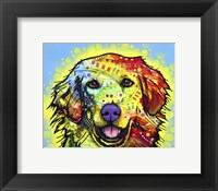 Framed Golden Retriever