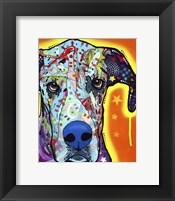 Framed Great Dane