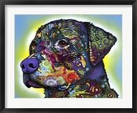 Framed Rottweiler