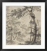 Framed Wooded Landscape