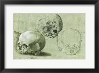 Framed Study of Three Skulls