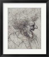 Framed Caricature of a Man with Bushy Hair