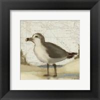 Framed Beach Bird II