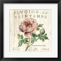 Framed Pivoine de Printemps