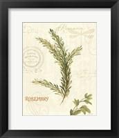 Framed Aromatique II