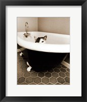 Framed Kitty III