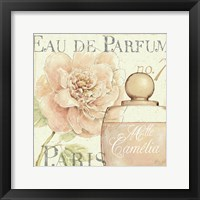 Framed Fleurs and Parfum II