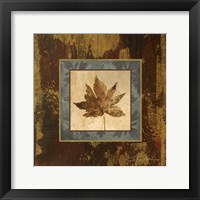 Autumn Leaf Square IV Framed Print