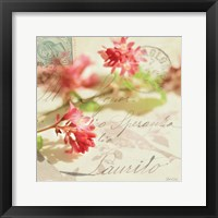 Vintage Letters and Pink Blossoms Framed Print