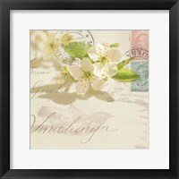 Vintage Letter and Apple Blossoms Framed Print