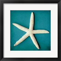Framed Sea Star II