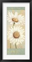 Beautiful Daisies I Framed Print