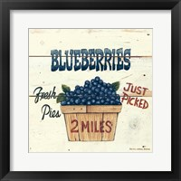 Blueberries Just Picked Framed Print