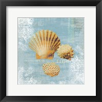 Tidal Treasures Framed Print