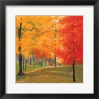 Framed Bright Autumn Day II