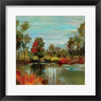 Hidden Pond Hues I Framed Print