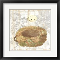 Framed Botanical Nest I