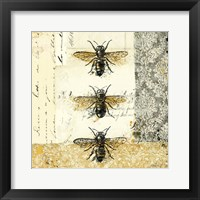 Framed Golden Bees n Butterflies No. 1