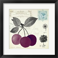 Cherry Notes Framed Print