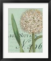 Botanique Bleu II Framed Print