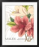 Framed Azalee Jardin I