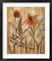 Aquarelle Garden II Framed Print