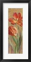 Framed Parrot Tulips on Gold II