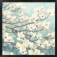 Framed Dogwood Blossoms II
