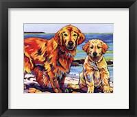 Framed Ginger & Polar