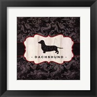 Top Dog III Framed Print