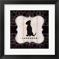 Top Dog V Framed Print