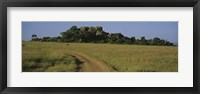 Framed Road passing through a grassland, Simba Kopjes, Road Serengeti, Tanzania, Africa