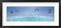 Framed Dolphins Leaping In Air