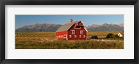Framed Barn in a field with a Wallowa Mountains in the background, Enterprise, Wallowa County, Oregon, USA