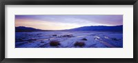 Framed Snow covered landscape in winter at dusk, Temple Sinacana, Zion National Park, Utah, USA
