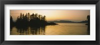 Framed Silhouette of trees in an island, Frederick Sound, Alaska, USA