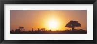 Framed Sunset, Tarangire, Tanzania, Africa