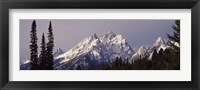 Framed Cathedral Group Mountains, Grand Teton National Park, Wyoming